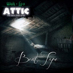 Wak and Fp+ - The latest finds of the attic